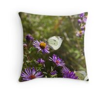 Cabbage Whites on New England Aster (Aster novae angliae) Throw Pillow