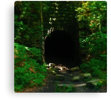 Cave Opening Canvas Print