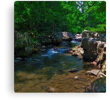 River Run Canvas Print