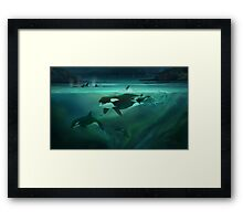 Call of the Matriarch Framed Print
