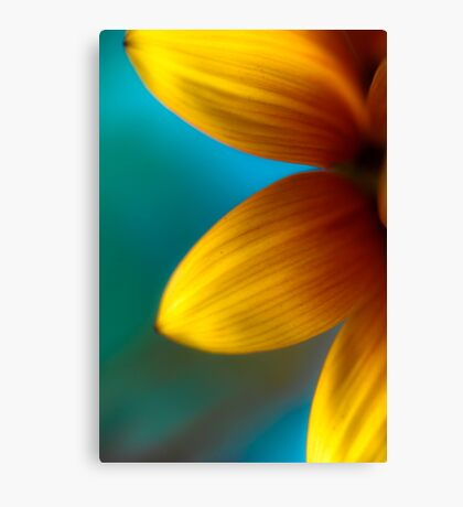 Ashley's Flower Canvas Print