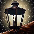 Night Light by Glenna Walker