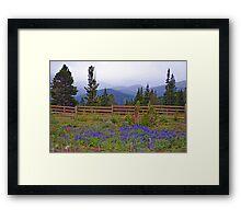 Mountain Meadow in Purple Framed Print