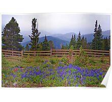 Mountain Meadow in Purple Poster