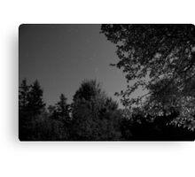 Cape Breton Night Sky Canvas Print