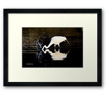 Ardea Alba - Great White Egret Catching Fish In Porpoise Channel | Stony Brook, New York Framed Print
