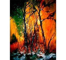Heart of Fire...Autumn Photographic Print