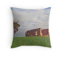 The Old Farmhouse, near Northhampton, Western Australia Throw Pillow