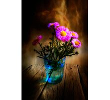 Autumn Asters Photographic Print