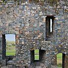 Harlech Windows by Christopher Bookholt
