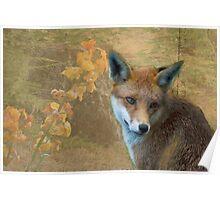 Foxy's world Poster