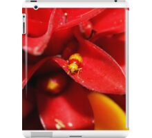 Red and Yellow bug iPad Case/Skin