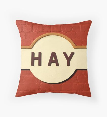 Hay Railway Station Throw Pillow