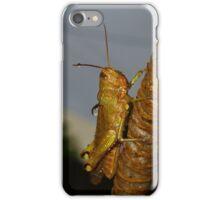 Wet Cricket iPhone Case/Skin