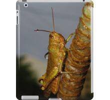 Wet Cricket iPad Case/Skin