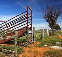Stock ramp at Mathoura by Darren Stones