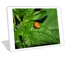 Fake Lady Beetle Laptop Skin