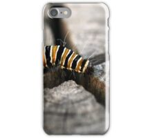 On the way to Butterfly iPhone Case/Skin