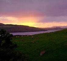 Welsh wonderland..on the road to Portmadog by Bilgolaj
