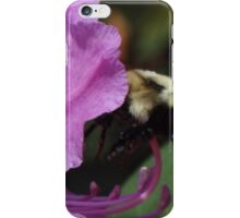 Busy Buzz Buzz iPhone Case/Skin