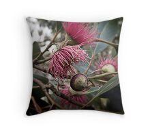 Flowering Gum. Limestone Coast. South Australia. Throw Pillow