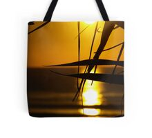 Leaves in the Sunlight Tote Bag