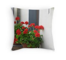 Geraniums on the Doorstep, York PA Throw Pillow
