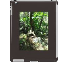 Fairy Hearth iPad Case/Skin