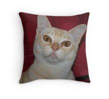 Louie Throw Pillow