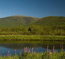 Moonrise over Mt. Washington by Alana Ranney