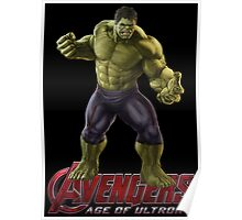 HULK - Conversation is over Poster