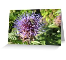 Prickly lunch Greeting Card