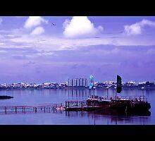 lakeside view by jayantilalparma