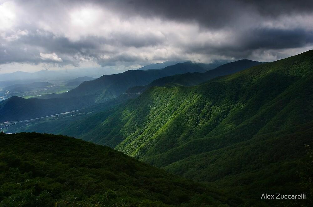 Moody Gajisan - Gajisan Provincial Park, South Korea by Alex Zuccarelli