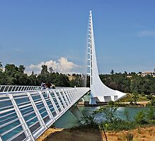 Sundial Bridge - Turtle Bay, California by Christine Till  @    CT-Graphics