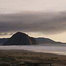 Cayucos Rock by Diana Forgione