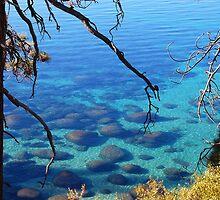 Lake Tahoe 2 by tom j deters
