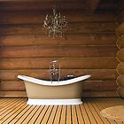 The Outdoor Bath Tub by Memaa