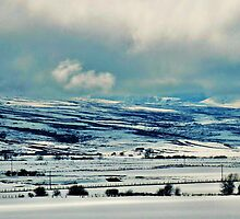 Winter on the Idaho Plains by trueblvr