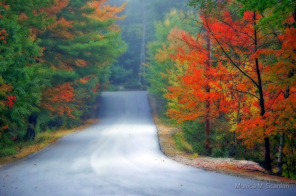 Scenic Road By Zephyr Lake by Monica M. Scanlan