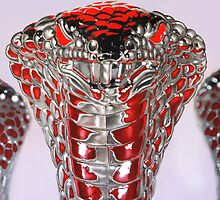 Babylonian Cobra(s) by Brien  White