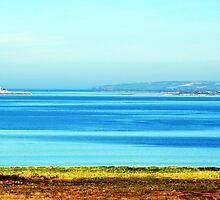 Tralee Bay by Pat Herlihy