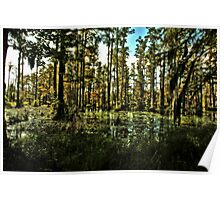 Swamp Shadows Poster