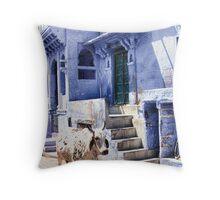 Holy Cow - Jodhpur (Blue City), India Throw Pillow