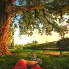 Summer Relaxation by Evan Ludes