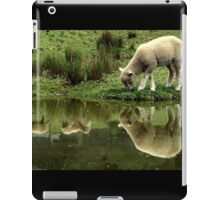 ~Reflections: Down on the Farm~ iPad Case/Skin