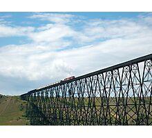Train on the Bridge Photographic Print