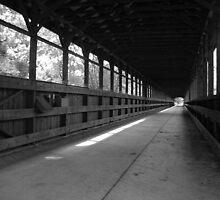 Bridge of Dreams by Timothy Eric Hites