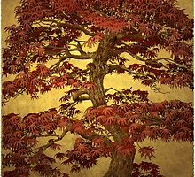 Red Maple Bonsai by ARTIST4HIRE