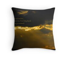 The Promise Throw Pillow